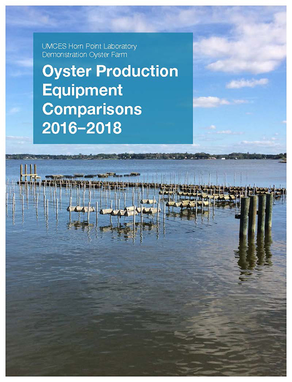 Oyster report cover