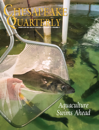 cover - chesapeake quarterly v 17 no 1