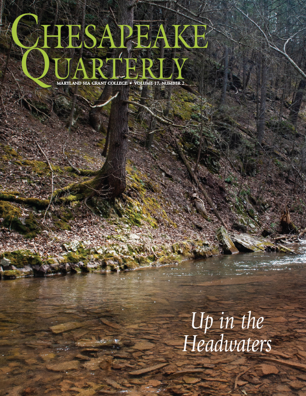 Issue cover: A stream flows through Green Ridge State Forest on its way to the Chesapeake 200 miles downstream.