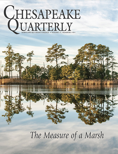 Cover: Chesapeake Quarterly Volume 17, Numbers 3 & 4