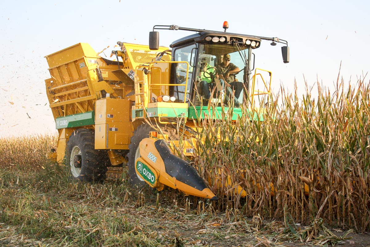 Photo of self-propelled harvester