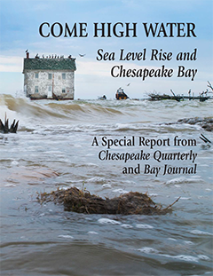 cover, sea level rise report