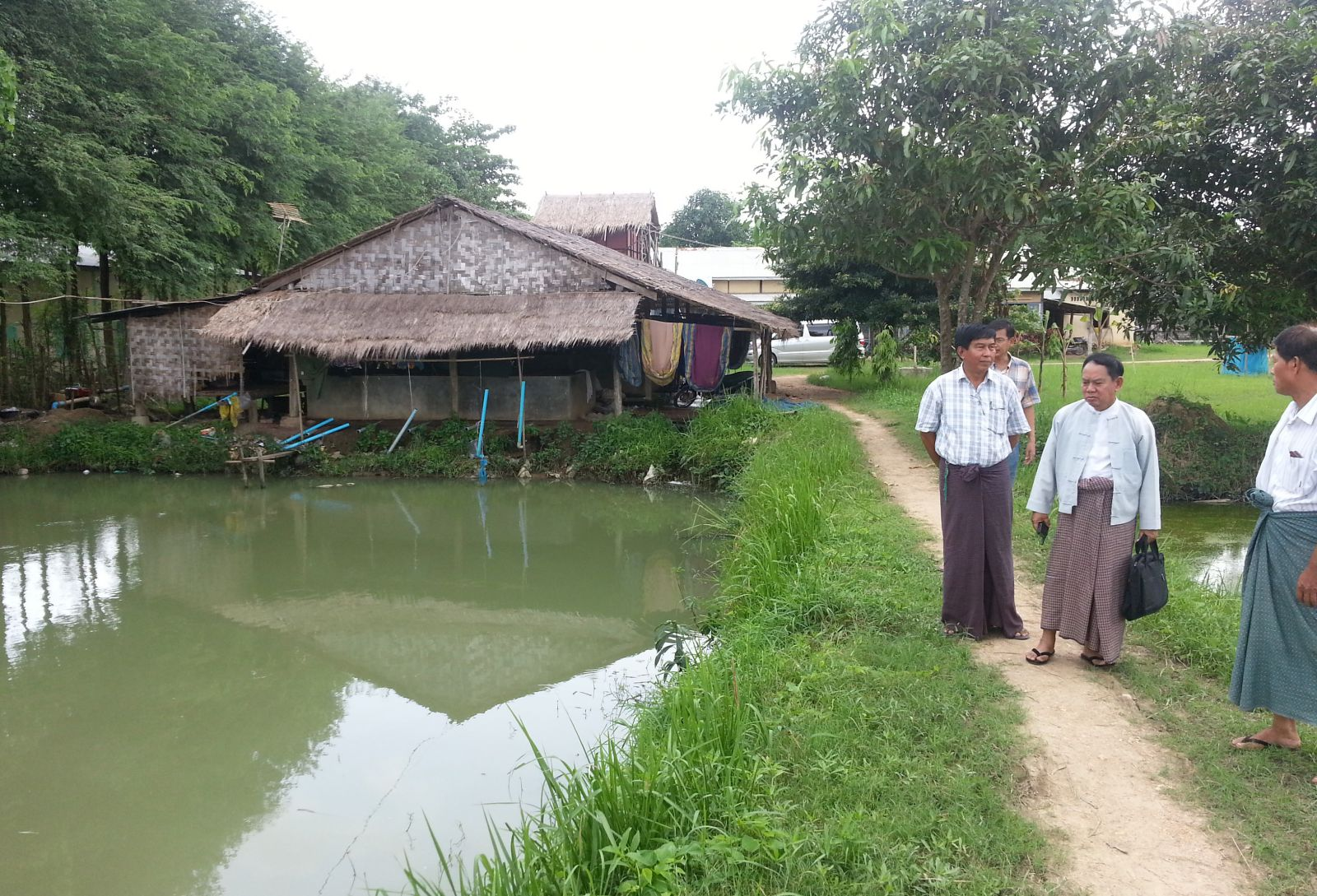 Business specialist teaches aquaculture farmers in myanmar for Fish pond business