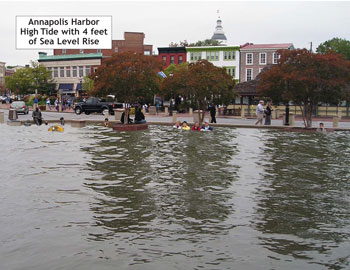 annapolis harbor flooded