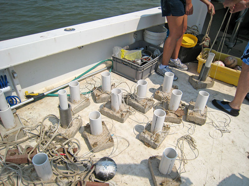 sediment traps made of PVC pipe on concrete anchors