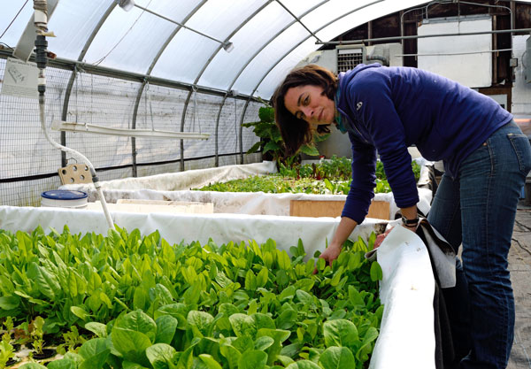 woman bending over plants in greenhouse