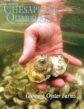 cover of Chesapeake Quarterly Volume 14 Issue 4