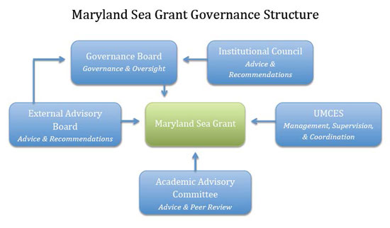 chart showing governance structure