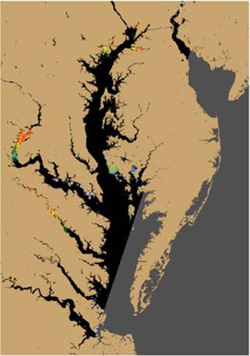 Satellites Could Offer Alerts Tracking Of Harmful Algae