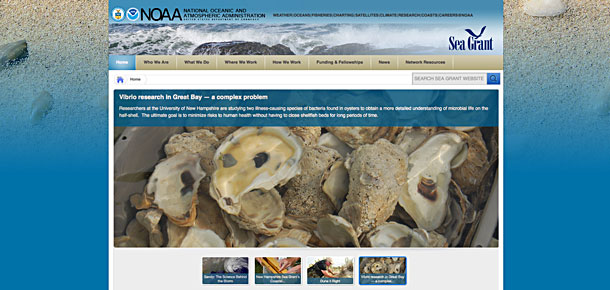 national sea grant web page