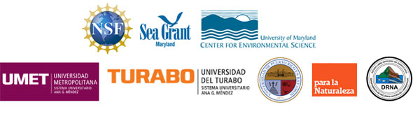 logos for all partners: NSF, UMCES, MDSG, UMET, UT, PN, DNER