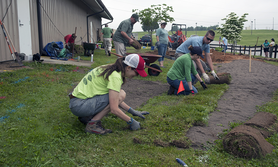 several people planting sod