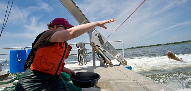 researcher on a boat throwing fish off