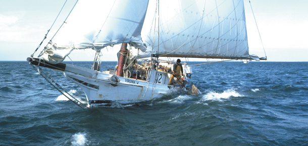 skipjack sailing vessel dredging for oysters