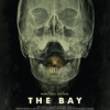 "promotional poster for the movie, ""The Bay"""