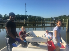 Using Phytoplankton Communities to Track the Restoration of the Anacostia River
