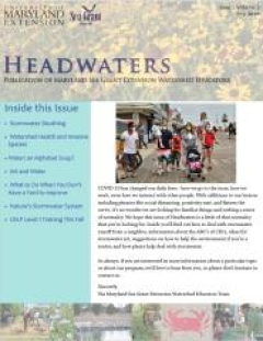 Headwaters newsletter cover for volume 7, issue 2