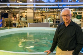 Portrait of Yonathan Zohar standing in front of an aquaculture tank at the Aquaculture Research Center