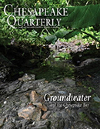 Chesapeake Quarterly cover v 19 n 1